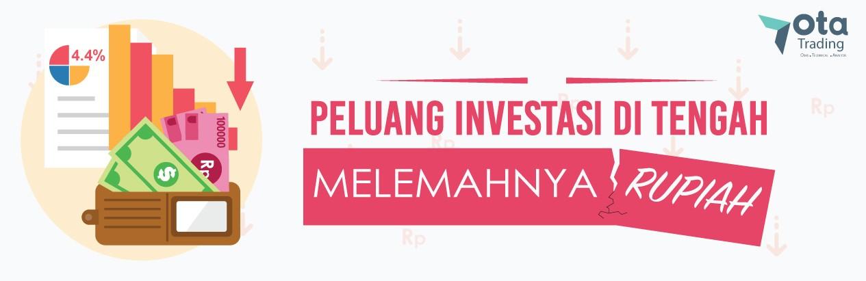 Peluang Investasi ditengah Melemahnya Rupiah